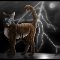 Hawkfrost -comm.- by TheMoonfall