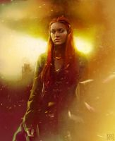 Of rose, and gold, and crimson by kittrose