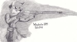 Winchester 1895 by SimonovFox