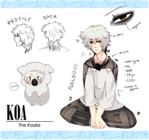 Koa, the koala gijinka by Tuliblu