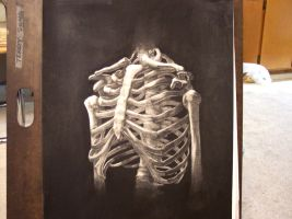 ribcage by terrysong