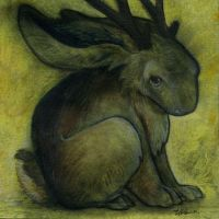 Black Jackalope by ursulav