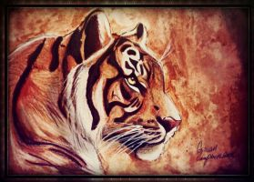 Tiger by gilly15