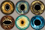 Animal Eyes 1 by Magweno