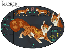 TMW | Firestorm | Thunderclan Tom by Allizia