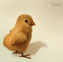 DAY 108. Photo Study - Chick (15 Minutes) by Cryptid-Creations