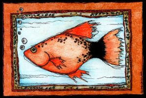 portraite of a fish by UpadanaSaddha