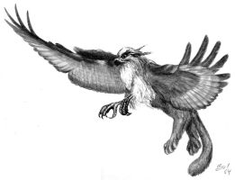 Another gryphon by Zidra