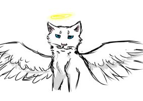 Angel cat by xXMeganMavelousXx