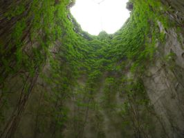 Tunnel Of Growth by CizreK