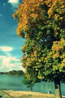 Tree, Lake, Sky by FarorePhotography