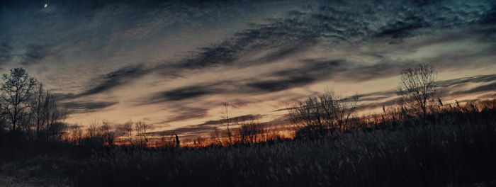 November Sunset panorama by bloomingvinedesign