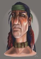 White Tail Comanche by LarryWilson