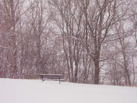 Lonely Bench by yazmin