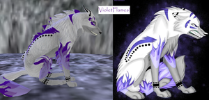 This is my refrence for VioletFlames by ForgottenBlueEyes