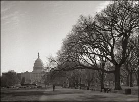 Quiet Morning in DC by aponom