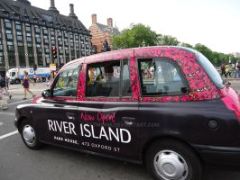Pink Flowers London Car by Tatmione