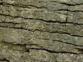 Granite Rock Texture 1 by FantasyStock