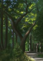 Photoshop in the forest in Paris by Mogura-no-kanji