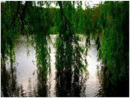 Under The Willow by Ramio