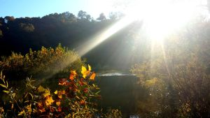 I saw the light at Spavinaw by Bobcat79