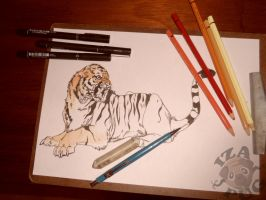 WIP Tiger by IzaPug