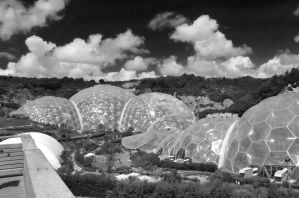 Eden Project Black n White by drr104