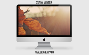 Sunny Winter Wallpaper Pack by NINJAIWORKS