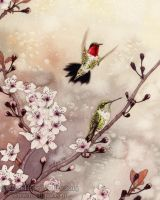 Spring Hummingbirds by MistiqueStudio