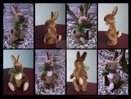 Plushie: Perenelle the Teddy Bunny by Avanii