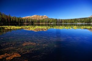 Teapot Lake Unitas by mjohanson