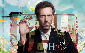 House MD 2 wide by Quincula
