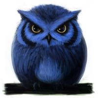 Blue Owl by D3H1