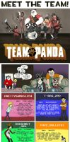 Panda Comic 3: MEET THE TEAM by FLAMINGPINECONE