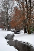 Creek in Snow by xshadow259