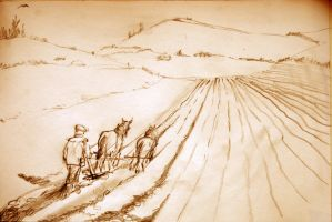 We Plough the fields and scatter....... by mr-macd
