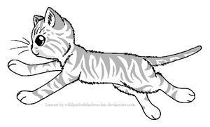 WindClan Tabby Warrior Lineart by WildpathOfShadowClan