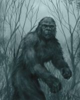 Bigfoot by chrisscalf