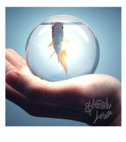 Fish in a Bubble Re-Write by stitchmouth