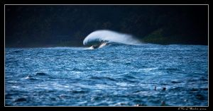 Hanalei Wave by aFeinPhoto-com