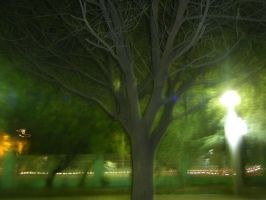 Blurred tree by swaseena