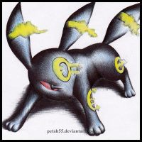 Umbreon by Petah55