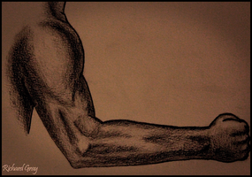 Male Arm by RicGrayDesign