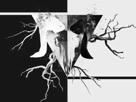 Black and white by WarGFX