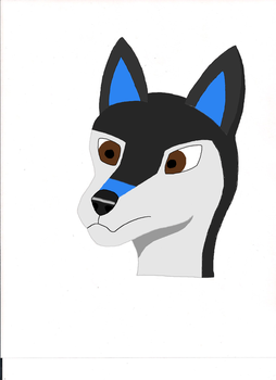 Wolfsona Headshot colored (Base Design) by wolfartist115