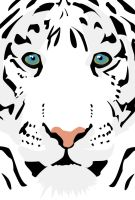 White Tiger vector by hoshi-kou