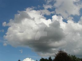 Sky..Clouds in white and grey tints by 69raywwf