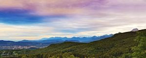 Carinthia by Nightline