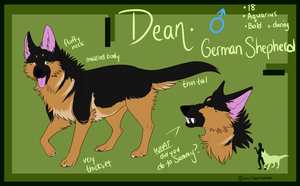 Dean Reference November 2013 by americaneagIe