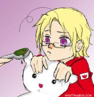 APH: Ill Canada by WhaTTina